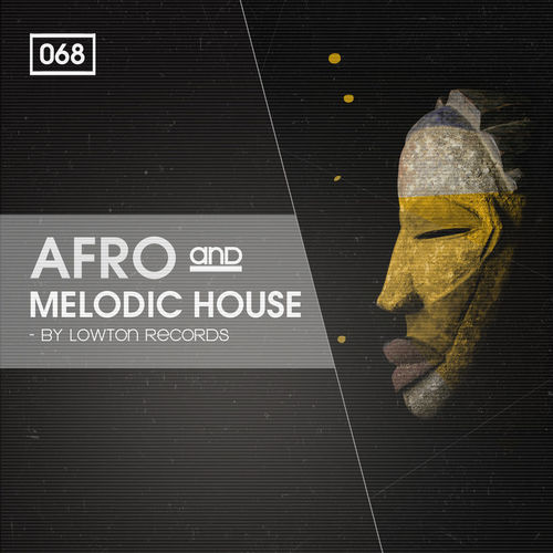 926 rsz afro   melodic house