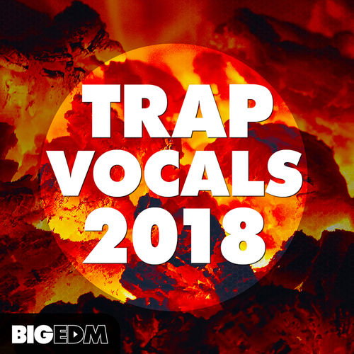 933 800x800big edm   trap vocals 2018 cover