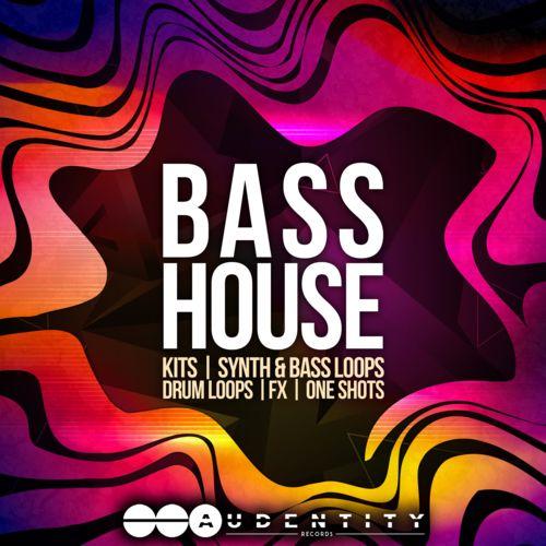 947 bass house