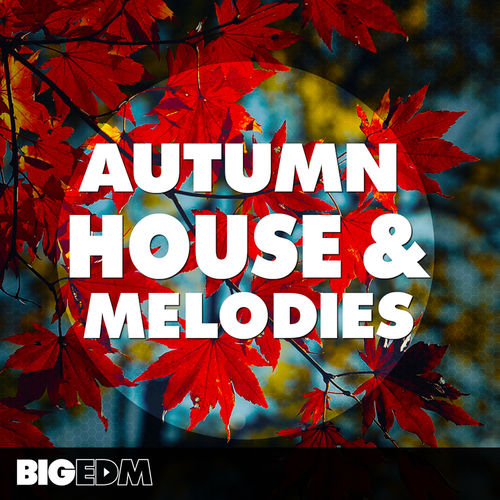 989 800x800big edm   autumn hosue   melodies cover
