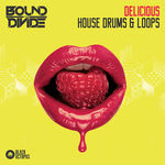 1033 bound to divide delicious house drums 800x800