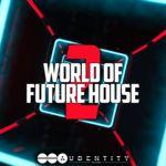 1041 worldfuturehouse2