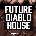 118 future diablo house