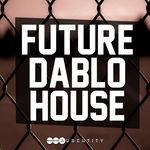 118 future dablo house1