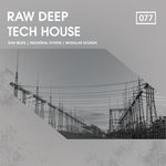 1217 rsz raw deep tech house