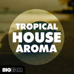 1375 800x800big edm   tropical house aroma cover