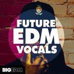 1442 800x800big edm   future edm vocals artwork