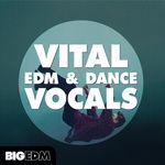 1444 800x800big edm   vital edm   dance vocals artwork