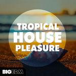 1573 800x800big edm   tropical house pleasure cover