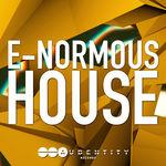 281 e normous house cover 5