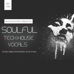 288 rsz soulful tech house vocals