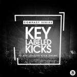 420 rsz compact series 02   key labeled kicks