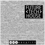 421 future tech house