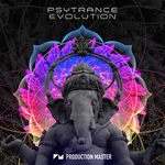 744 psytrance evolution   artwork 800x800