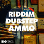750 800x800big edm   riddim dubstep ammo cover