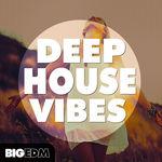 847 800x800big edm   deep house vibes cover