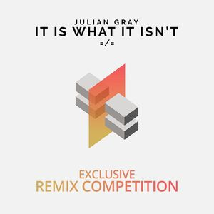 Julian gray   it is what it isn't cover